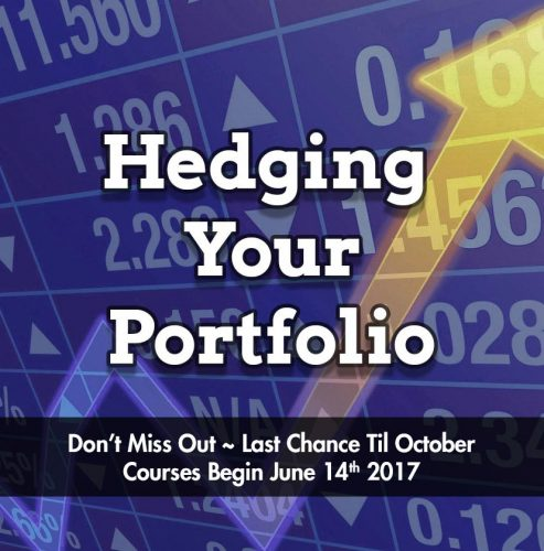 Hedging-Your-Portfolio-Product_IMAGE